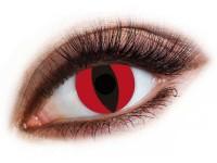 Lentile de contact Red Cat